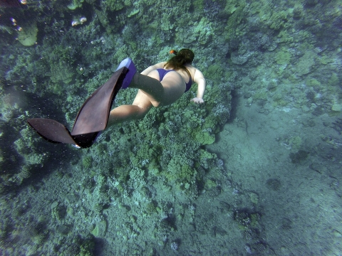 Best spots for beginner snorkeling and swimming around the world
